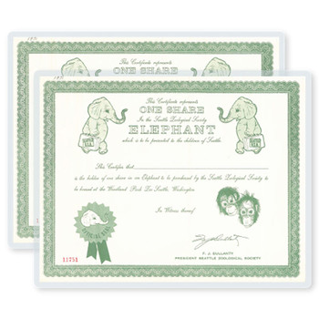 Pouch laminating green and white school certificate